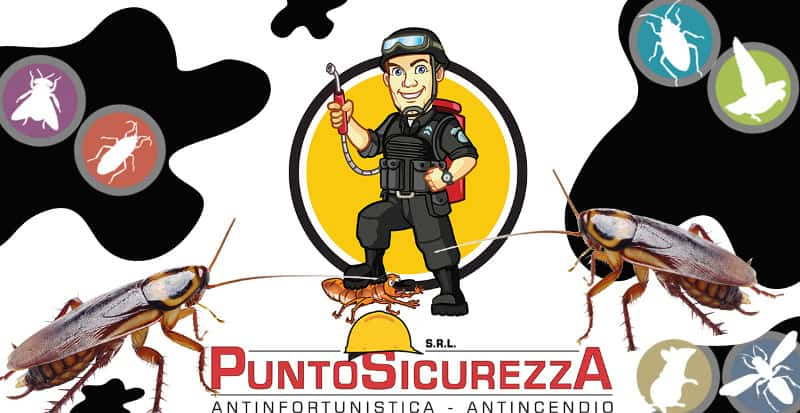 disinfestazione e derattizzazione ad Arezzo e provincia