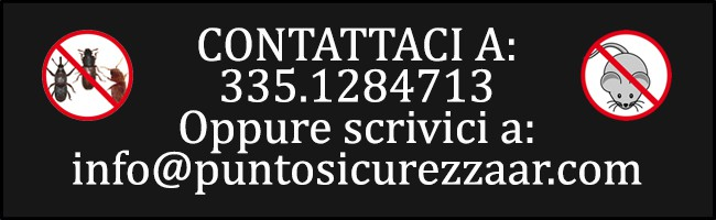 disinfestazione e derattizzazione ad Arezzo